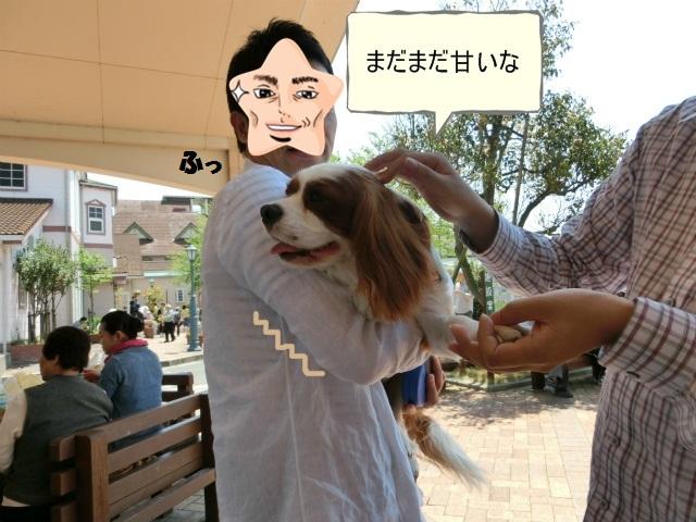 2013,04,30 あいとう・キャバぷちオフ会 029