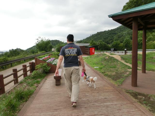 2013,07,06 思いつき和歌山の旅 018