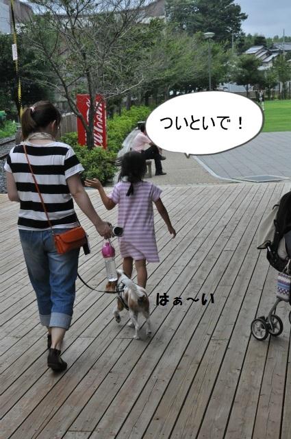 2013,07,06 思いつき和歌山の旅 079