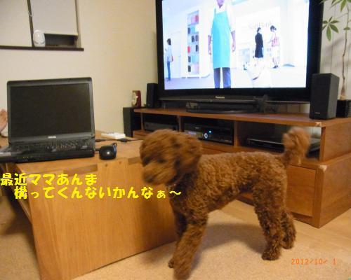 001_convert_20121004005228.jpg