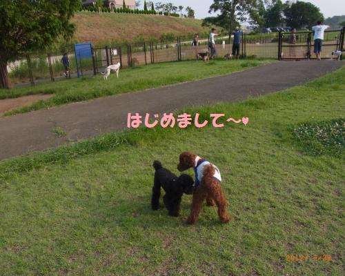 004_convert_20120728094502.jpg