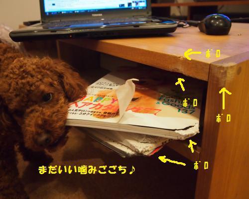 005_convert_20121205220608.jpg