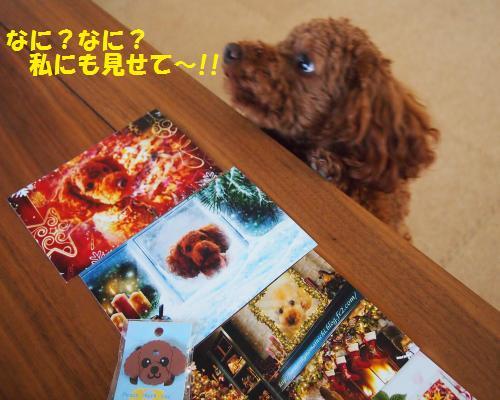 005_convert_20121208110014.jpg