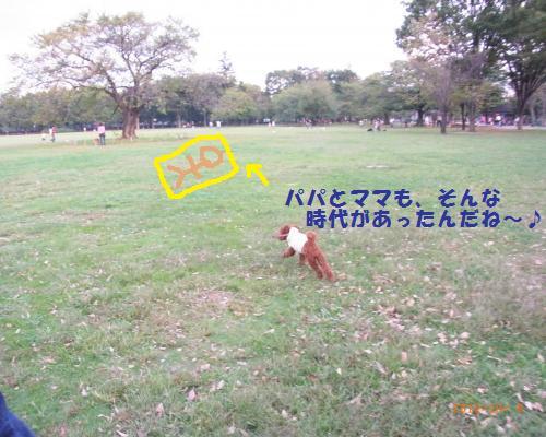 008_convert_20121006221505.jpg