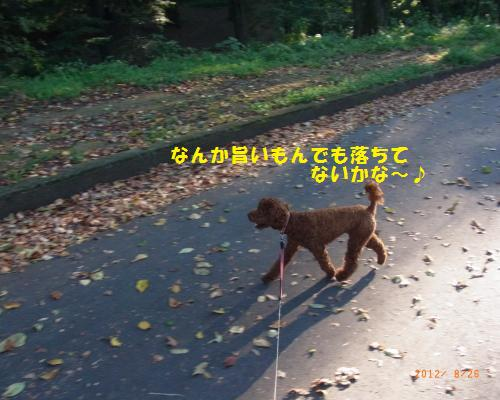011_convert_20120827003721.jpg