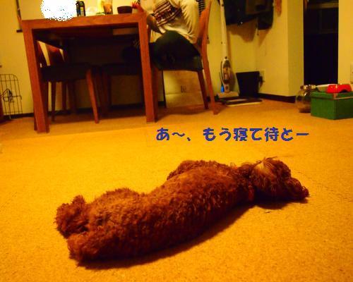 012_convert_20121116011404.jpg
