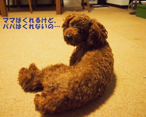 013_convert_20121116010922.jpg