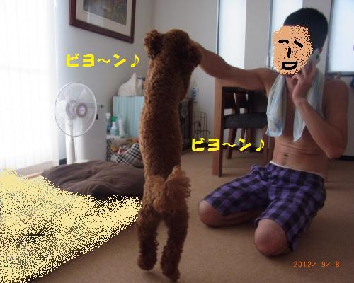 015_convert_20120911075035.jpg