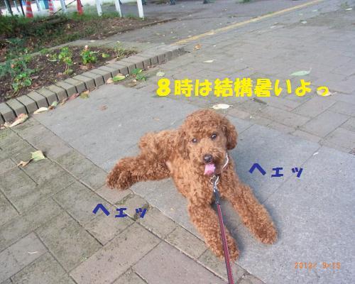 015_convert_20120919230818.jpg