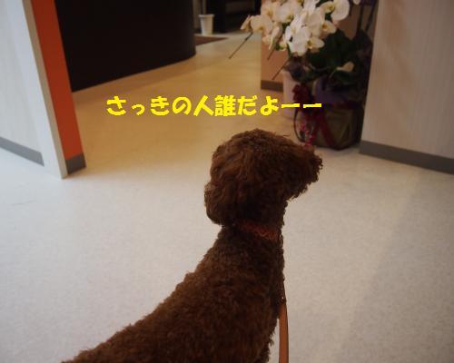 020_convert_20121102225938.jpg