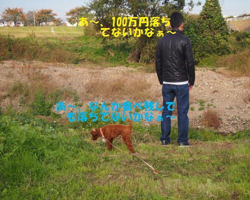 020_convert_20121104085759.jpg
