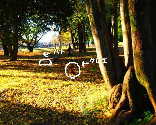 020_convert_20121118214752.jpg