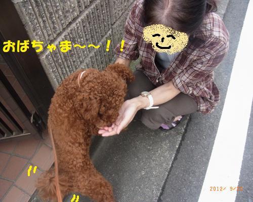 021_convert_20120922184524.jpg