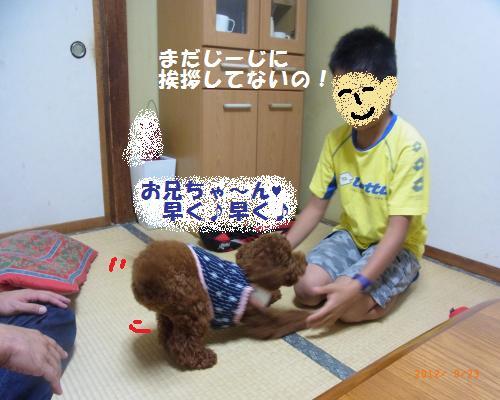 024_convert_20120928011626.jpg