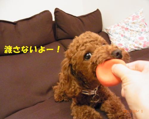 026_convert_20121004010428.jpg