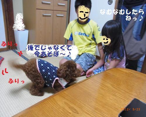 027_convert_20120928011755.jpg