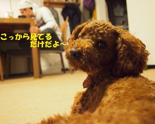 028_convert_20121116005738.jpg