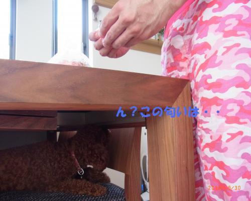 029_convert_20120930212342.jpg