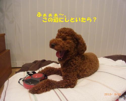 030_convert_20120913204947.jpg