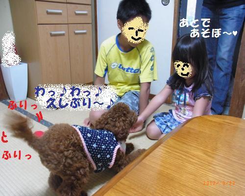 030_convert_20120928012031.jpg