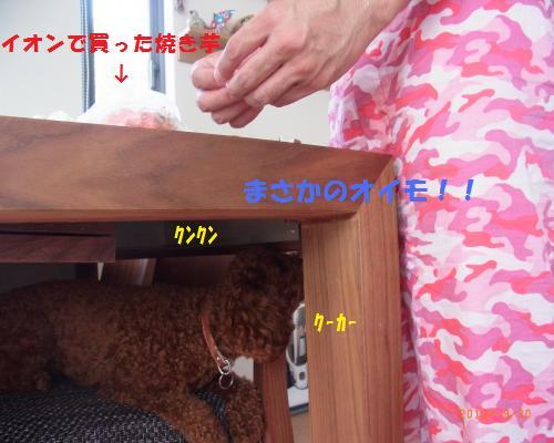 032_convert_20120930212518.jpg