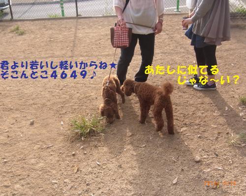 034_convert_20120917131822.jpg