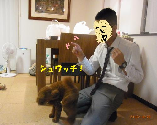 035_convert_20120830222700.jpg