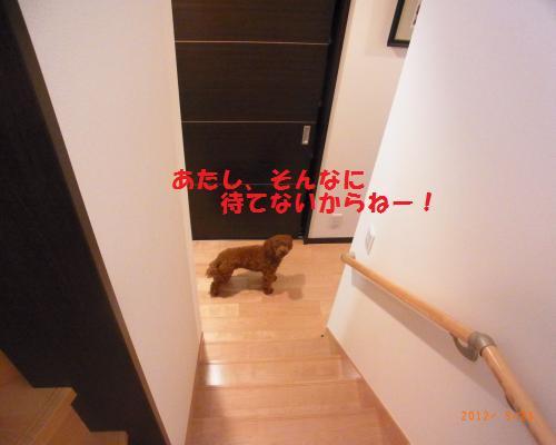036_convert_20120923124329.jpg