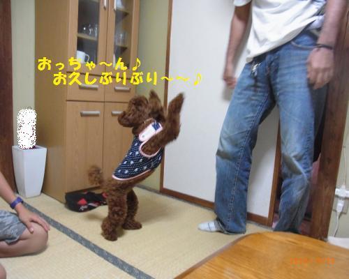 036_convert_20120928194124.jpg