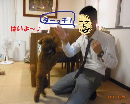 037_convert_20120830230516.jpg
