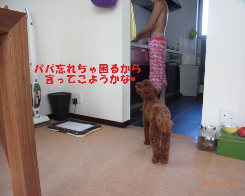 037_convert_20120930215412.jpg