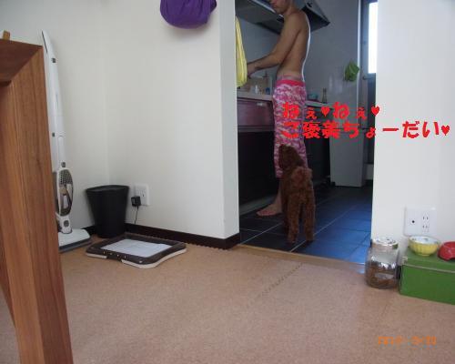038_convert_20120930215512.jpg