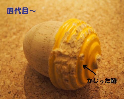 038_convert_20121128002807.jpg