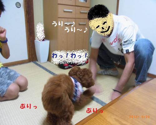 039_convert_20120928194336.jpg