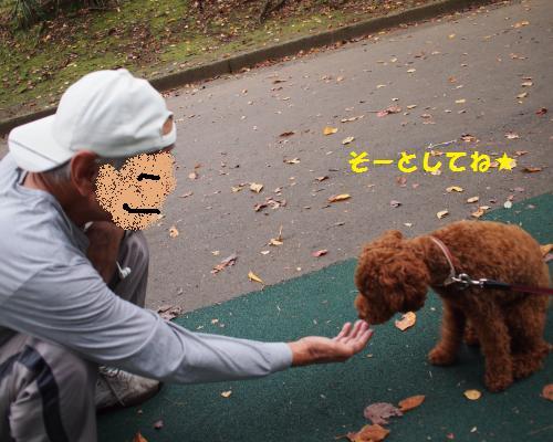039_convert_20121013004815.jpg