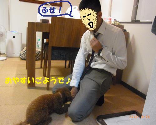 040_convert_20120830223035.jpg