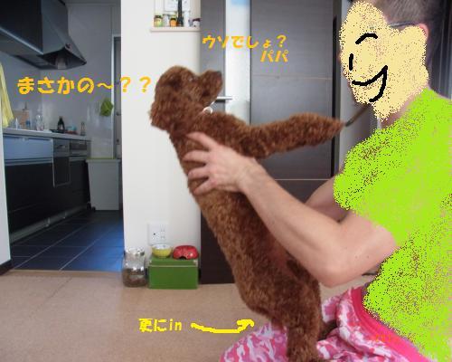 042_convert_20120930213038.jpg
