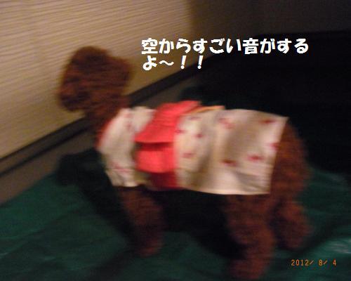 044_convert_20120805083021.jpg
