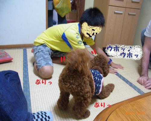 044_convert_20120928194625.jpg