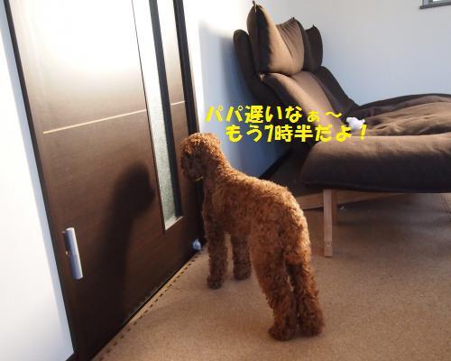 044_convert_20130215225946.jpg