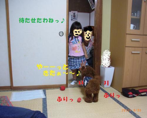 046_convert_20120928194928.jpg