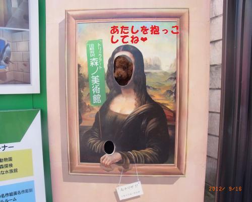047_convert_20120917132119.jpg