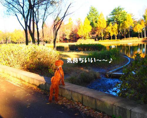 047_convert_20121118095933.jpg