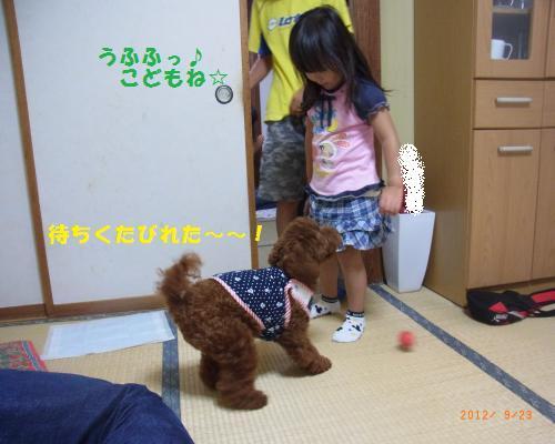 048_convert_20120928195218.jpg