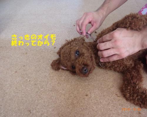 048_convert_20120930213405.jpg