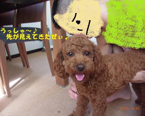 052_convert_20120930214739.jpg