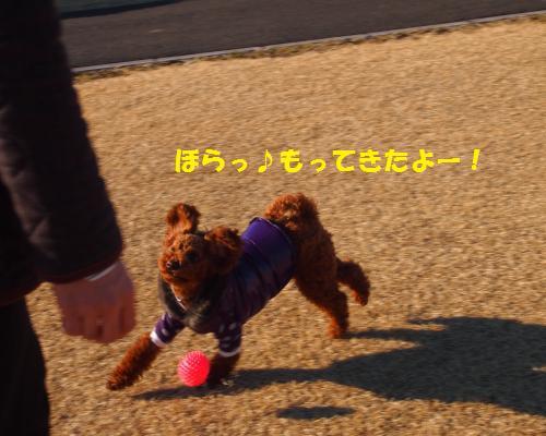 054_convert_20130124002020.jpg