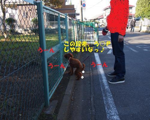 055_convert_20121113213819.jpg