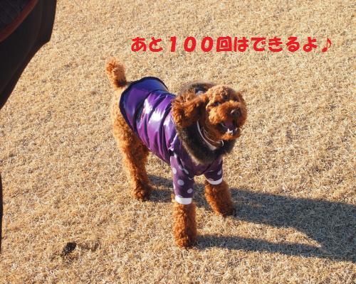 055_convert_20130124002053.jpg
