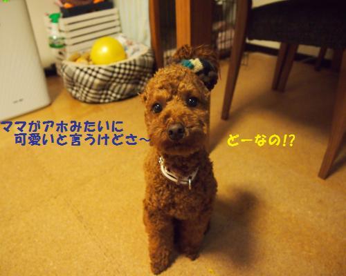 057_convert_20130117220447.jpg